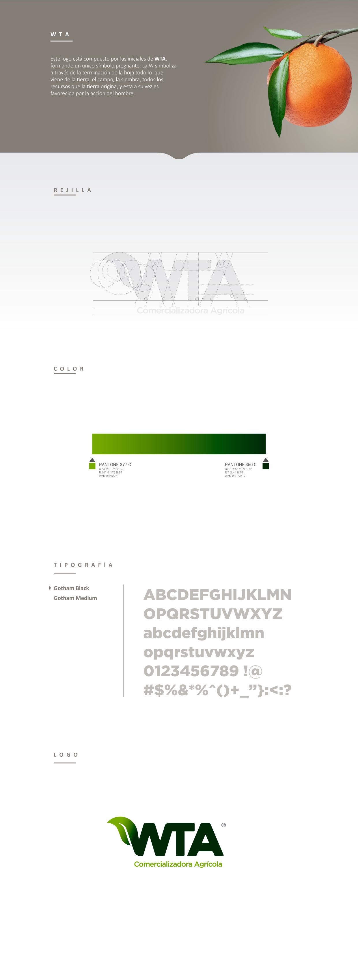 portafolio-rocket-WEB1